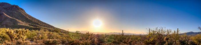 De panoramische zonsondergang van de sonoranwoestijn royalty-vrije stock fotografie