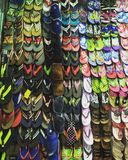 De pantoffels Royalty-vrije Stock Foto's