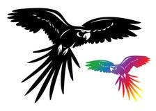 De papegaai van aronskelken Royalty-vrije Stock Afbeelding