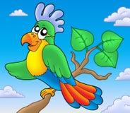 De papegaai van het beeldverhaal op tak Royalty-vrije Stock Fotografie
