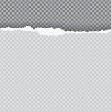 De papel rasgado com borda rasgada ilustração royalty free