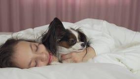 De Papillonhond wekt tienermeisje in de de lengtevideo van de bedvoorraad stock videobeelden