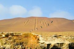 De Paracas kandelaberna som kallas också kandelaberna av Anderna, berömd attraktion på sanden av de Ballestas öarna, Peru, södra  Royaltyfri Bild