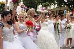 De parade van de bruid Royalty-vrije Stock Afbeeldingen