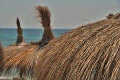 De paraplu's van het palmstro Royalty-vrije Stock Afbeelding