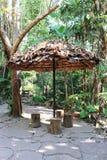De paraplu wordt gemaakt van doorbladert op een park dat stock afbeeldingen