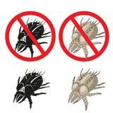 De parasietwaarschuwingsbord van stofmijten Sluit omhoog van een huismijt Royalty-vrije Stock Afbeeldingen