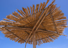 De parasol Stock Foto