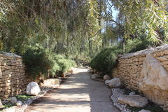 De parc naturel de jardin fond dehors Photos stock
