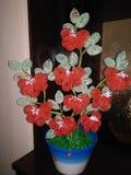 De parels van bloemenjuwelen in potten op een donkere achtergrond stock foto's