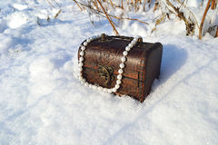 De parels van de juwelendoos Royalty-vrije Stock Foto's
