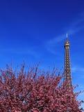 De Parijse lente royalty-vrije stock afbeeldingen