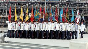 De partij die van kleuren tijdens NDP 2009 marcheert Royalty-vrije Stock Afbeeldingen