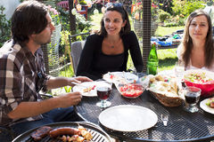De partij van de barbecue in de tuin Stock Afbeelding
