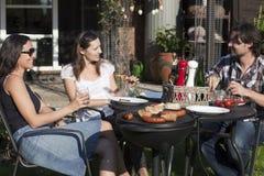 De partij van de barbecue in de tuin Royalty-vrije Stock Afbeeldingen