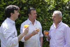 De Partij van de familie in de Tuin Royalty-vrije Stock Foto
