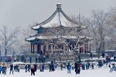 De partij van de sneeuw. Stock Foto's