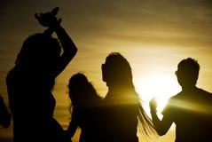 De partij van de zonsondergang Stock Afbeeldingen