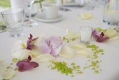 De partij van het huwelijk Stock Foto's