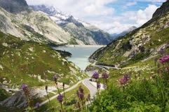 De pas Grimsel in Zwitserland stock afbeelding