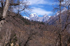 De Pas landschap-XXVII van de winterkuari Royalty-vrije Stock Foto