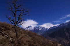 De Pas landschap-Xxx van de winterkuari Stock Fotografie