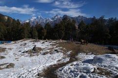 De Pas landschap-Xxxii van de winterkuari Royalty-vrije Stock Fotografie