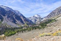 De pas van de Tiogaberg, Sierra Nevada, Californië stock foto