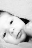 De pasgeboren Jongen van de Baby Royalty-vrije Stock Afbeeldingen
