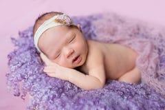 De pasgeboren meisjesslaap Royalty-vrije Stock Foto's