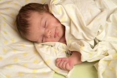 De pasgeboren slaap royalty-vrije stock afbeelding