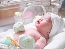 De pasgeboren slaap van de babyzuigeling in de incubator bij het ziekenhuis royalty-vrije stock afbeeldingen