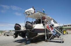 De passagiers die een haai inschepen duiken boot Zuid-Afrika royalty-vrije stock fotografie