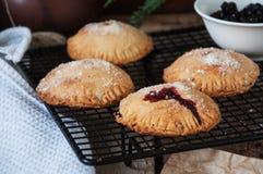 De pastei van de bosbessenhand Royalty-vrije Stock Foto