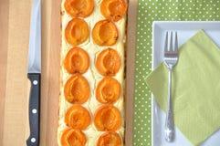 De pastei van de abrikoos Stock Foto