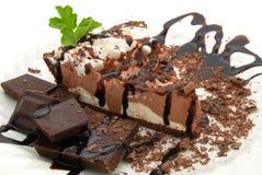 De pastei van de chocolade Stock Afbeelding