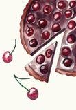De pastei van de waterverfcake met chokolate en kers stock illustratie