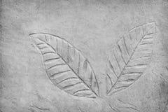De patronenaard van paar grijze bladeren drukte textuur in concrete vloer voor achtergrond royalty-vrije stock foto