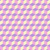 De patroonzeshoek Stock Afbeeldingen