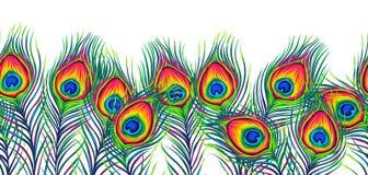 De pauw bevedert naadloos patroon stock illustratie