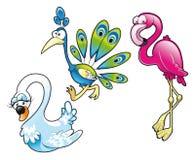 De pauw en de flamingo van de zwaan Stock Foto's