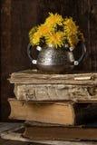 De pays toujours la vie avec le bouquet et les vieilles choses, livres Images stock
