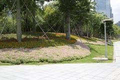 De paysages de conception le centre ville dedans de la ville Shenzhen image libre de droits
