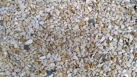 De pedalen van het tuinkalksteen, tuinweg, braken witte kalk, tuindecoratie met kalk, achtergrond, patroon af Titel SP royalty-vrije stock afbeelding