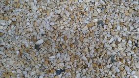 De pedalen van het tuinkalksteen, tuinweg, braken witte kalk, tuindecoratie met kalk, achtergrond, patroon af Titel SP stock afbeelding