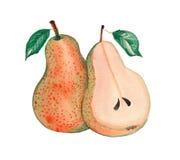 De peer van fruitchina Stock Afbeeldingen