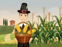 De pelgrimsmens bereidt de oogst op dankzegging voor Royalty-vrije Stock Afbeeldingen