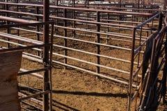De Pen van het vee Royalty-vrije Stock Afbeeldingen
