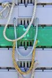 De pennen van de zeekreeftopslag royalty-vrije stock foto