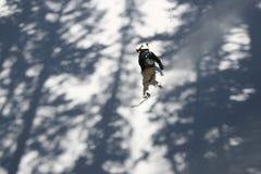 De pensionair van de sneeuw in actie Stock Foto